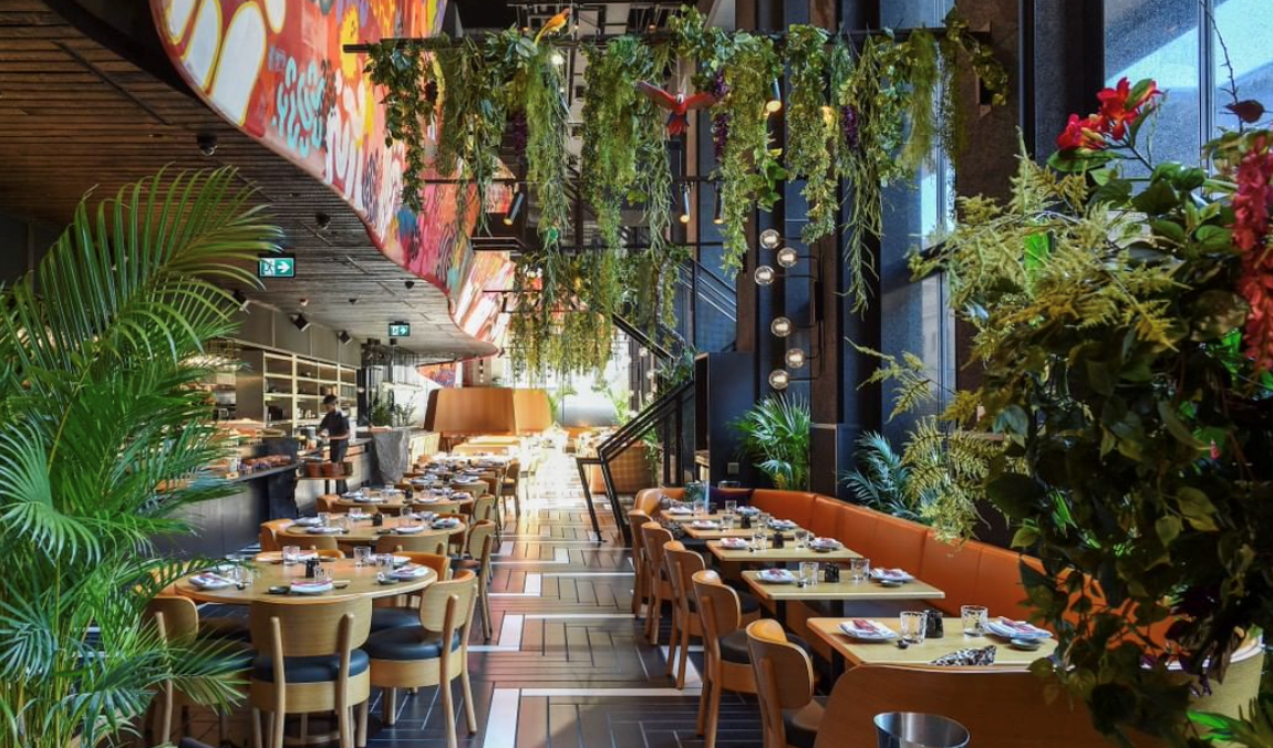 jungle brunch, indoor jungle interior and dining exerience